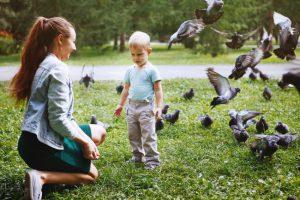 鳩と戯れる親子のイメージ画像